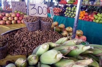 02_06_2017_Economia Mercados Municipais Sao joao_Periperi_Fot Bruno Concha_Secom_Pms (5)